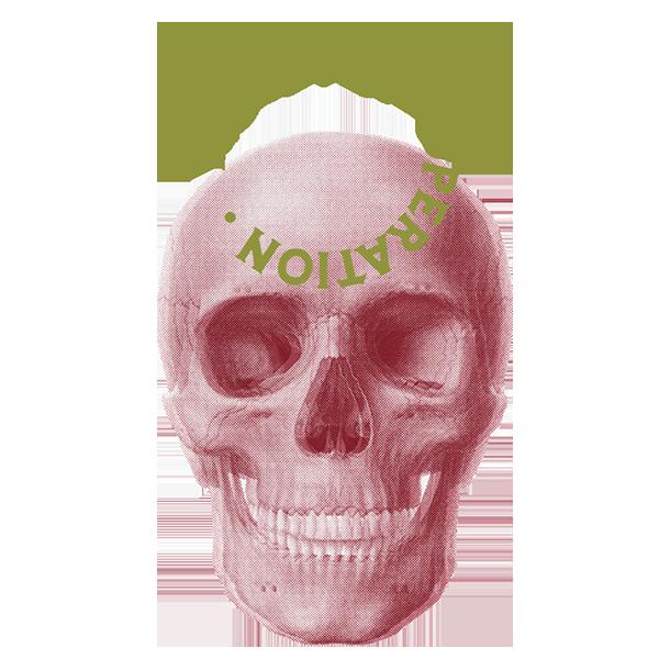 web-lado-lado-Imageslado-lado-skull